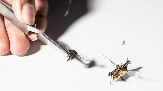 Untethered Robotic Insects