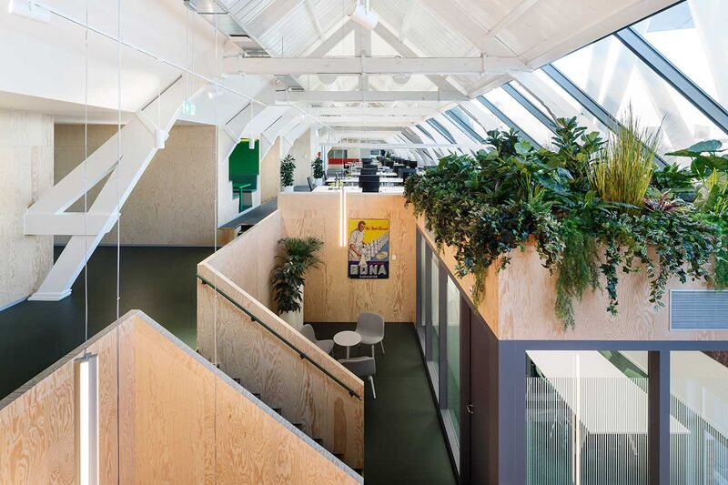 Cheery Open-Concept Office Spaces