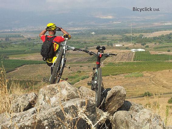 Upright Bike Stands
