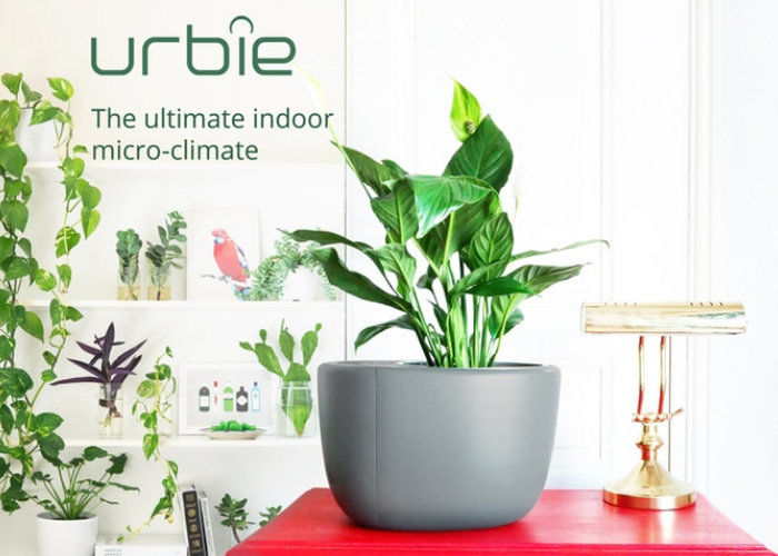 Planter-Integrated Air Purifiers