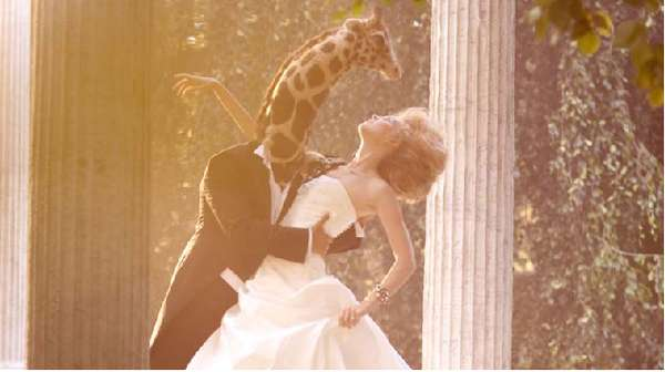 Enchanting Bridal Spreads