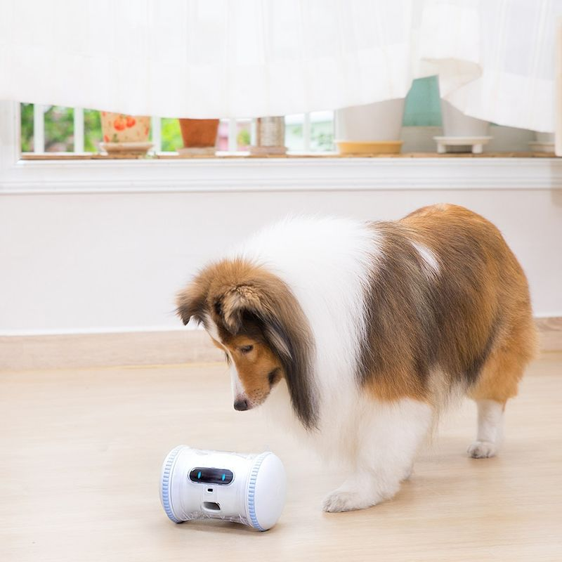 AI-Powered Pet Companions
