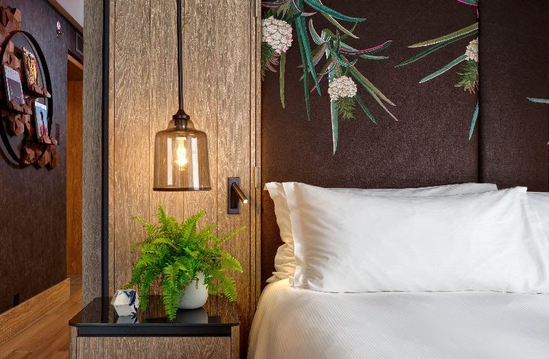All-Vegan Hotel Suites