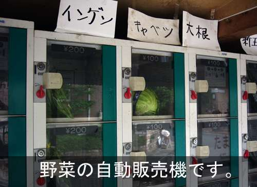 Vegetable Vending Machines