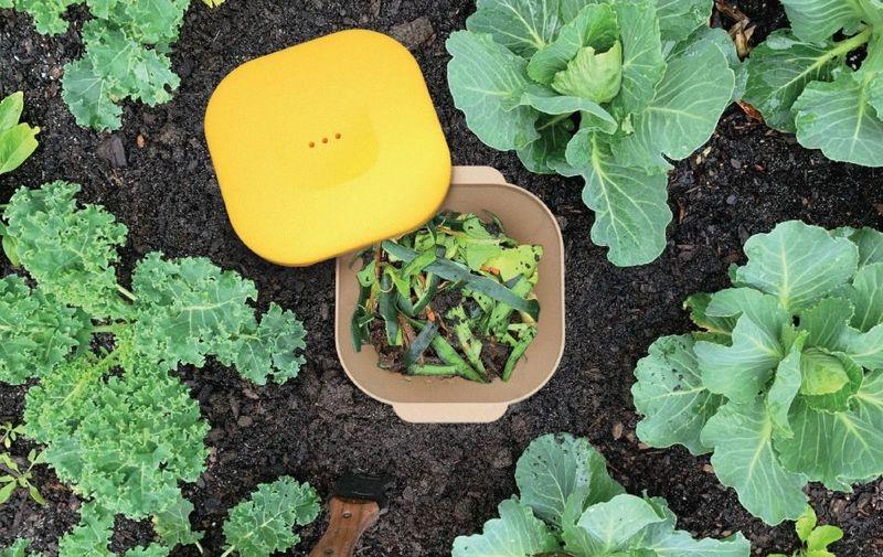 In-Ground Organic Waste Bins
