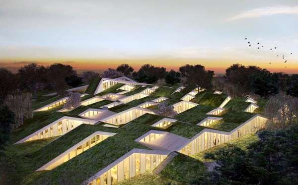 Green-Roofed Classrooms