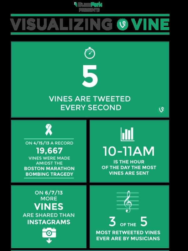 Social Media User Infographics