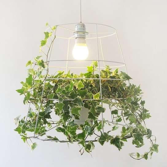 Vine-Inspired Lighting