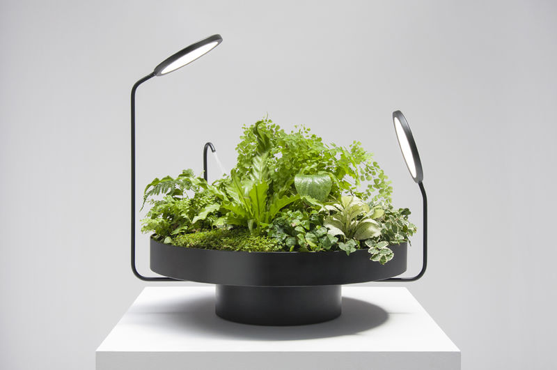 Indoor Plant Illuminators