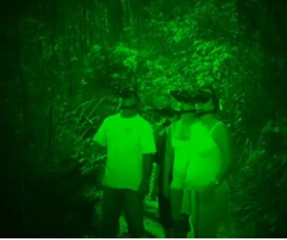 Night Vision Forest Tours