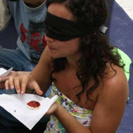 Visually Impaired Tours