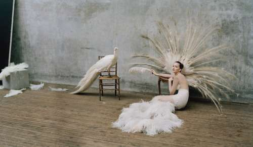 Feathery Avant-Garde Photoshoots