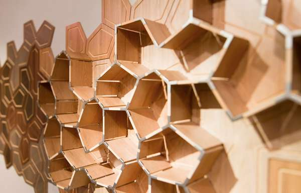 Tectonic Timber Shelves