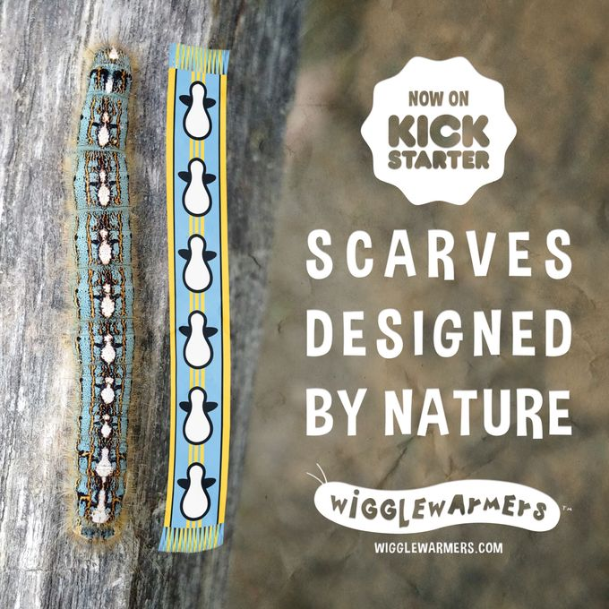 Insect-Inspired Scarves