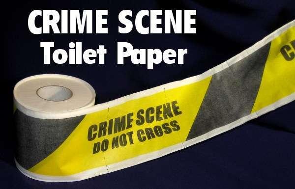 crime scene investigation essay papers