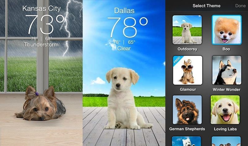 Puppy-Presenting Weather Apps