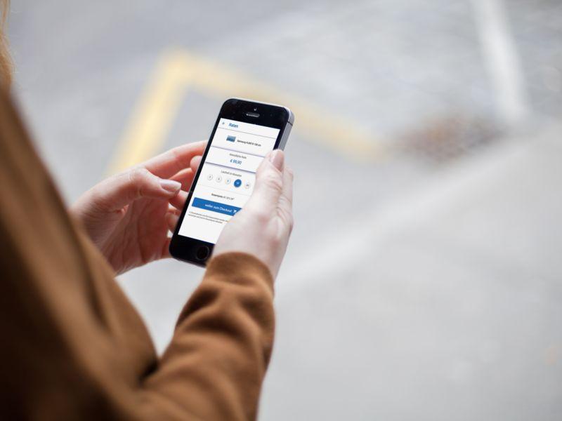 Online Store Financing Platforms