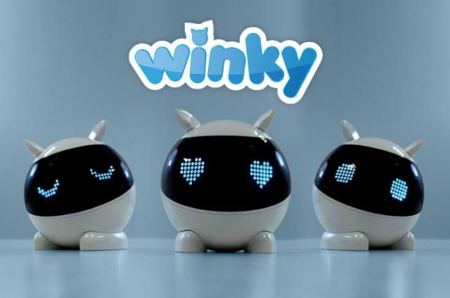 Introductory Coding Robot Toys