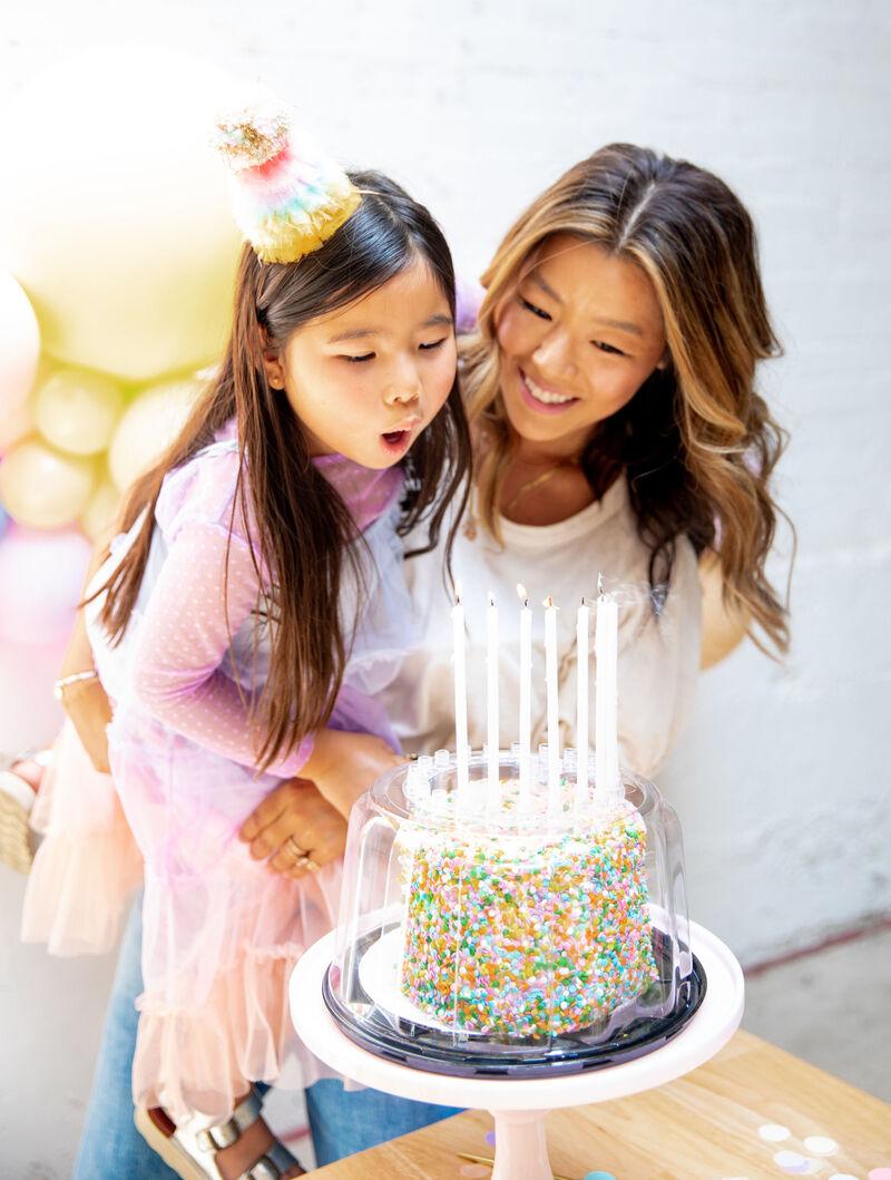 Birthday Cake Protectors