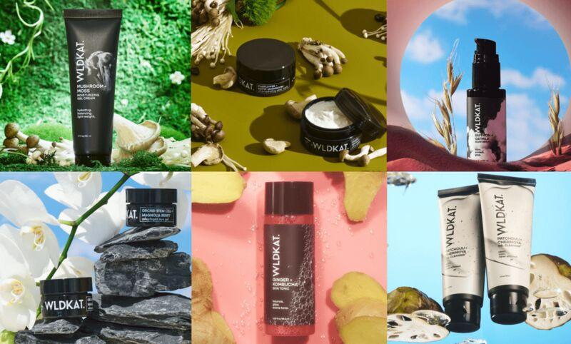 Inclusive Clean Beauty Rebrands