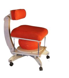 Ergonomic Exercise Chairs