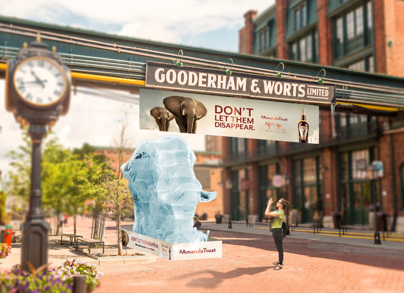 Charitable Elephant Ice Sculptures