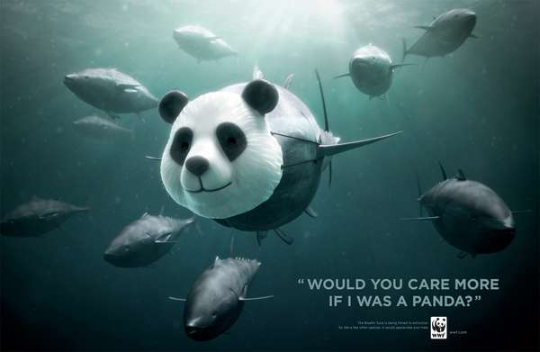 Thought-Provoking Fish Campaigns