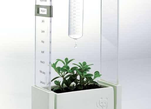 Ethical Planter Calendars