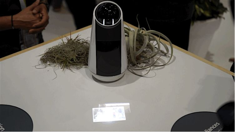 Personal Assistant Robots