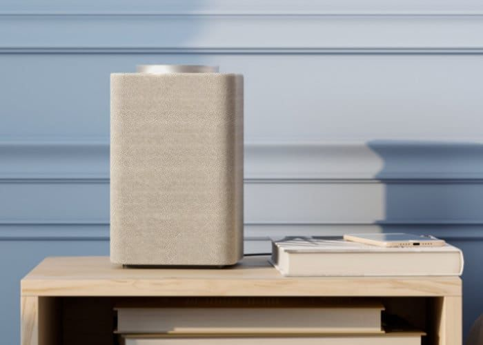 Russian Voice Assistant Speakers