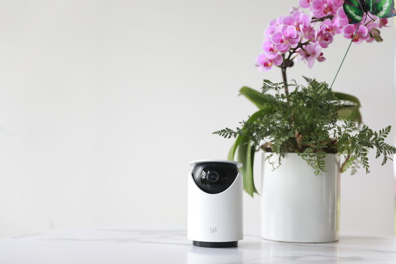 AI Home Security Systems