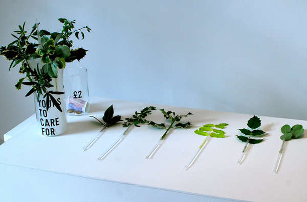 Plastic Straw Vases