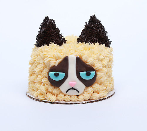 Grumpy Cat Cakes Youtuber Rosanna Pansino